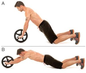 Ab Wheel Roller Basic Workout Exercise