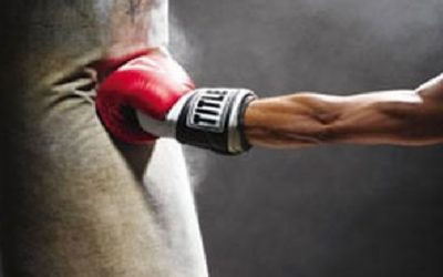 best boxing and punching bag reviews and buyers guide