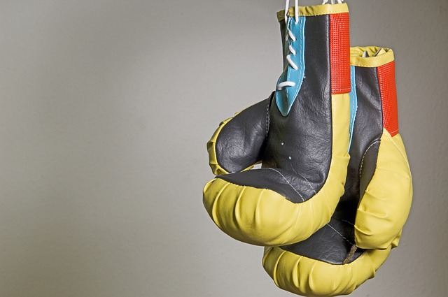 Best Boxing Gloves for Beginners - Reviews, Prices and Buyer's Guide