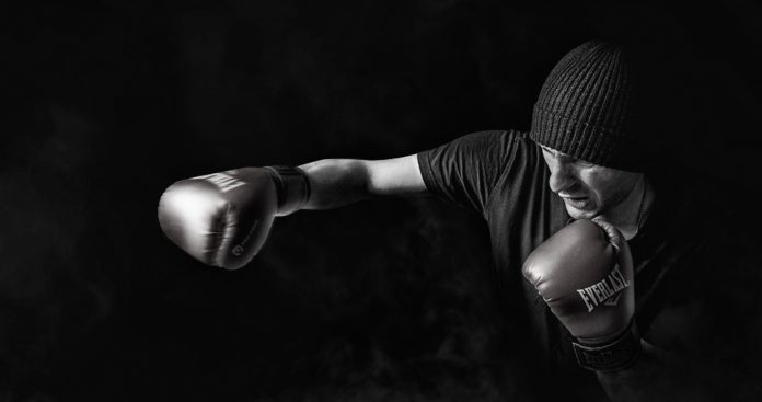 Best Boxing Gloves, MMA Hand Wraps, Punching Bag Mitts